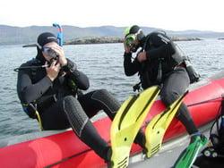 Dive Ireland 2