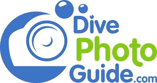 Divephotoguide Launches Free Online Comprehensive Underwater