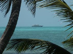 boat-tropical-liveaboard.jpg