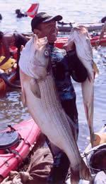 Spearfishing Photo 3