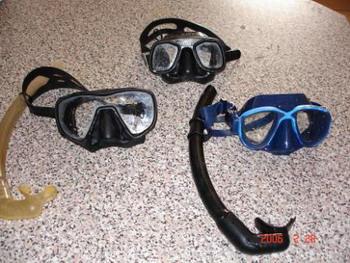 Dummies guide to Spearfishing   Part I spearfishing basics  spearo equipment spearfishing learn to spearfish beginner