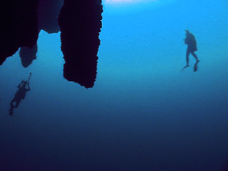 Belize's Blue Hole - What's all the fuss about? 5