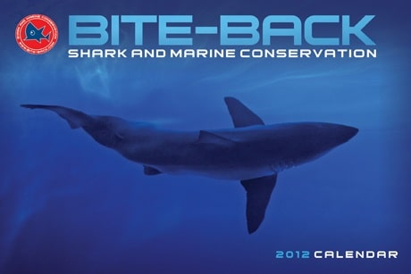 "UK Conservation Charity ""Bite-Back"" Launch 2012 Calendar 3"