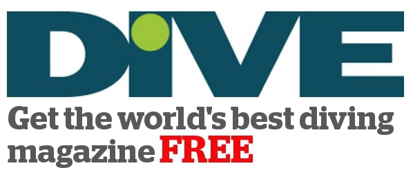 UK magazine DIVE launches free online version 3
