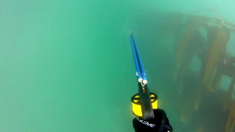 [VIDEO] Spearfishing: Trapped Underwater Fighting a 65lb+ White Seabass