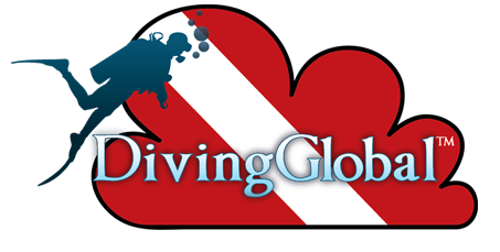 DEMA Show 2012: DivingGlobal Unveils New Cloud-Based Software For Dive Businesses 3