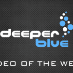 video-of-the-week-2014
