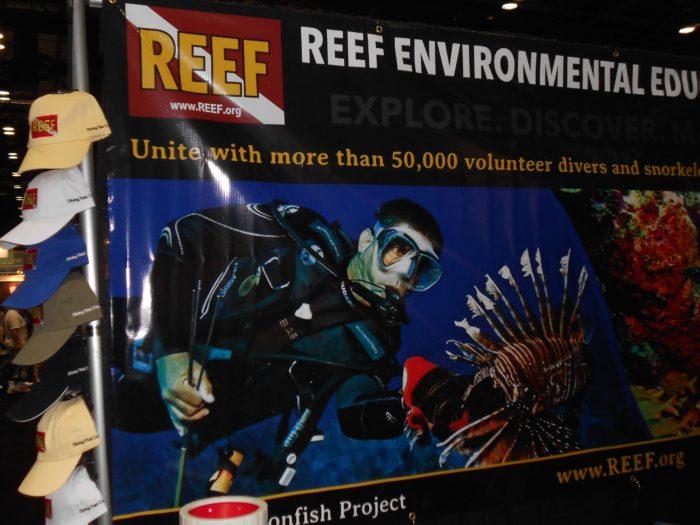 DEMA Reef.org