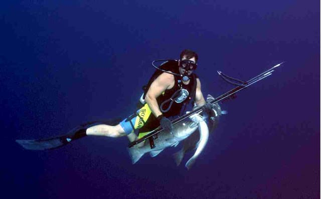 New Rules Prohibiting Scuba Spearfishing Off West Hawaii Signed By Governor