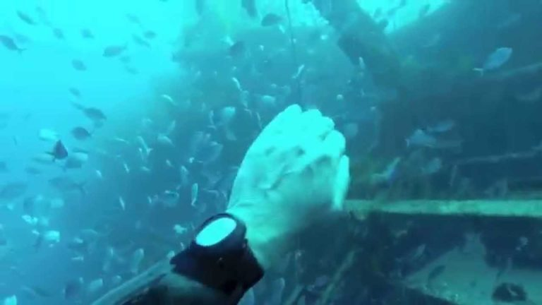 [VIDEO] Freediving the HMNZS Canterbury