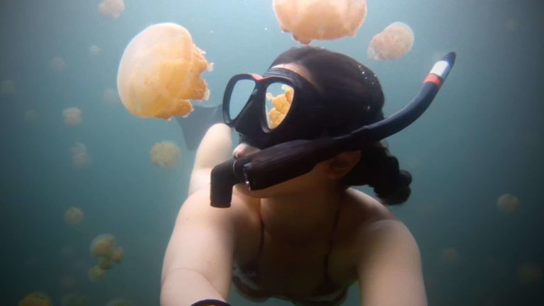 [VIDEO] Lost Freediving in Jellyfish Lake