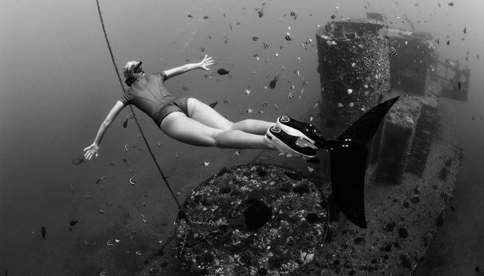 Freediving and Biomimetic Propulsion 2