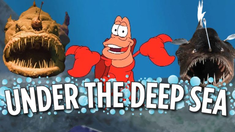 [VIDEO] Under The Deep Sea (Little Mermaid Parody)