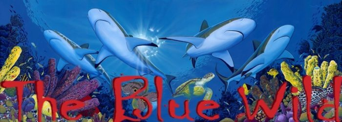 The Blue Wild Logo