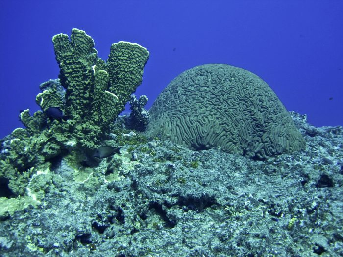 Guam - Cocos Islands