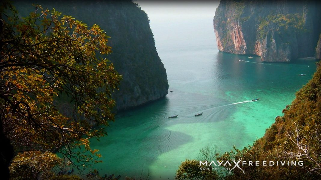 Freedive International Announce 2nd Thailand Center in Koh Phi Phi 2