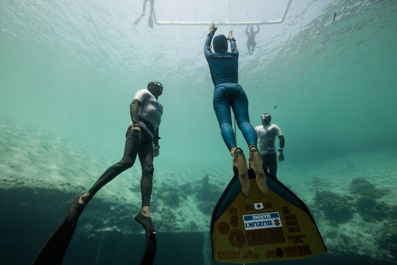 Evolution Makes Freediving Possible For Some Divers