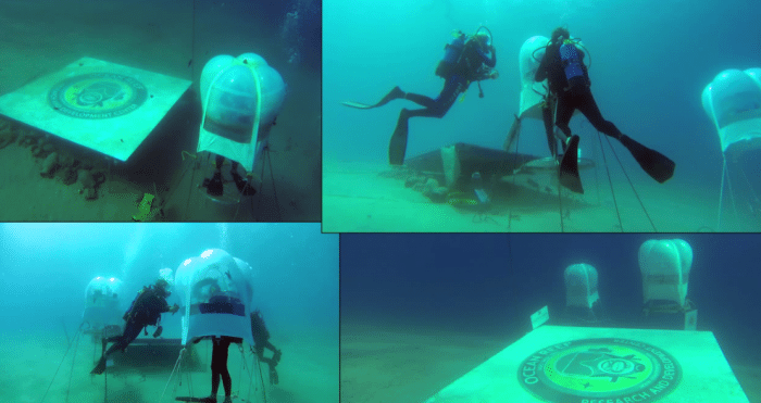 Underwater Greenhouse Developer To Begin Crowdfunding Campaign Soon 2