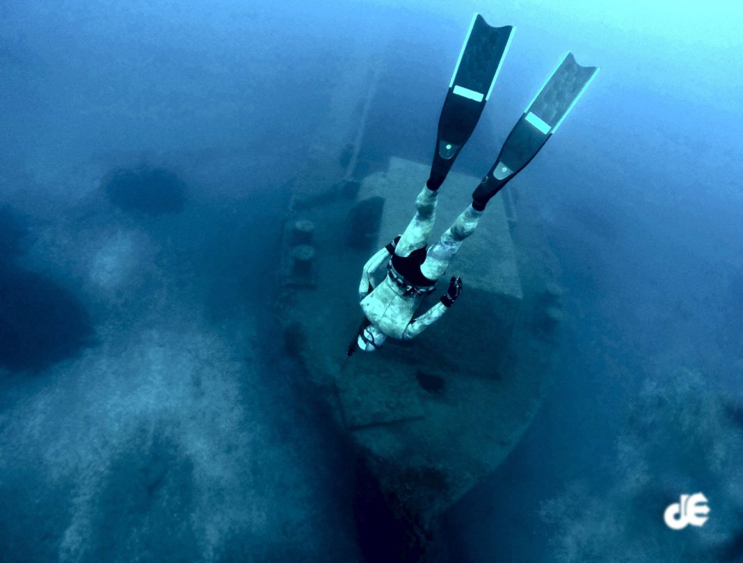 Deep Spearfishing Encyclopedia