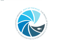 'Out Of The Blue' Photography Competition Under Way