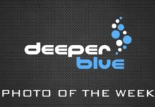 DeeperBlue.com Photo Of The Week
