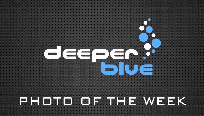 DeeperBlue.com Photo Of The Week