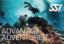SSI Announces Availability Of 'Advanced Adventurer' Digital Course