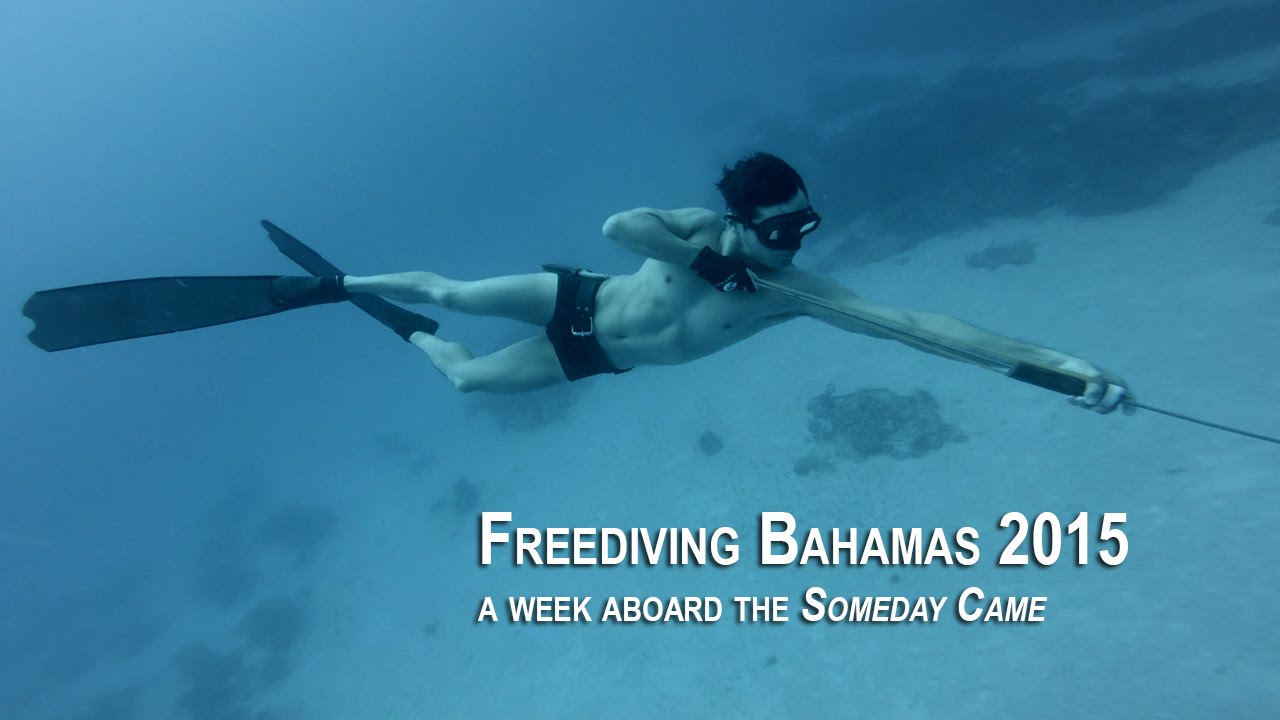 [VIDEO] Freediving Bahamas 2015, a week aboard the 'Someday Came'