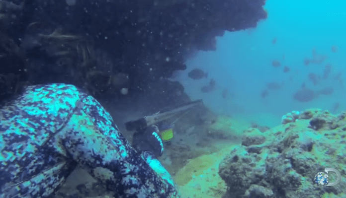 Kimi Werner spearfishing off of Hawaii