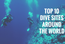 Top 10 Dive Sites Around The World