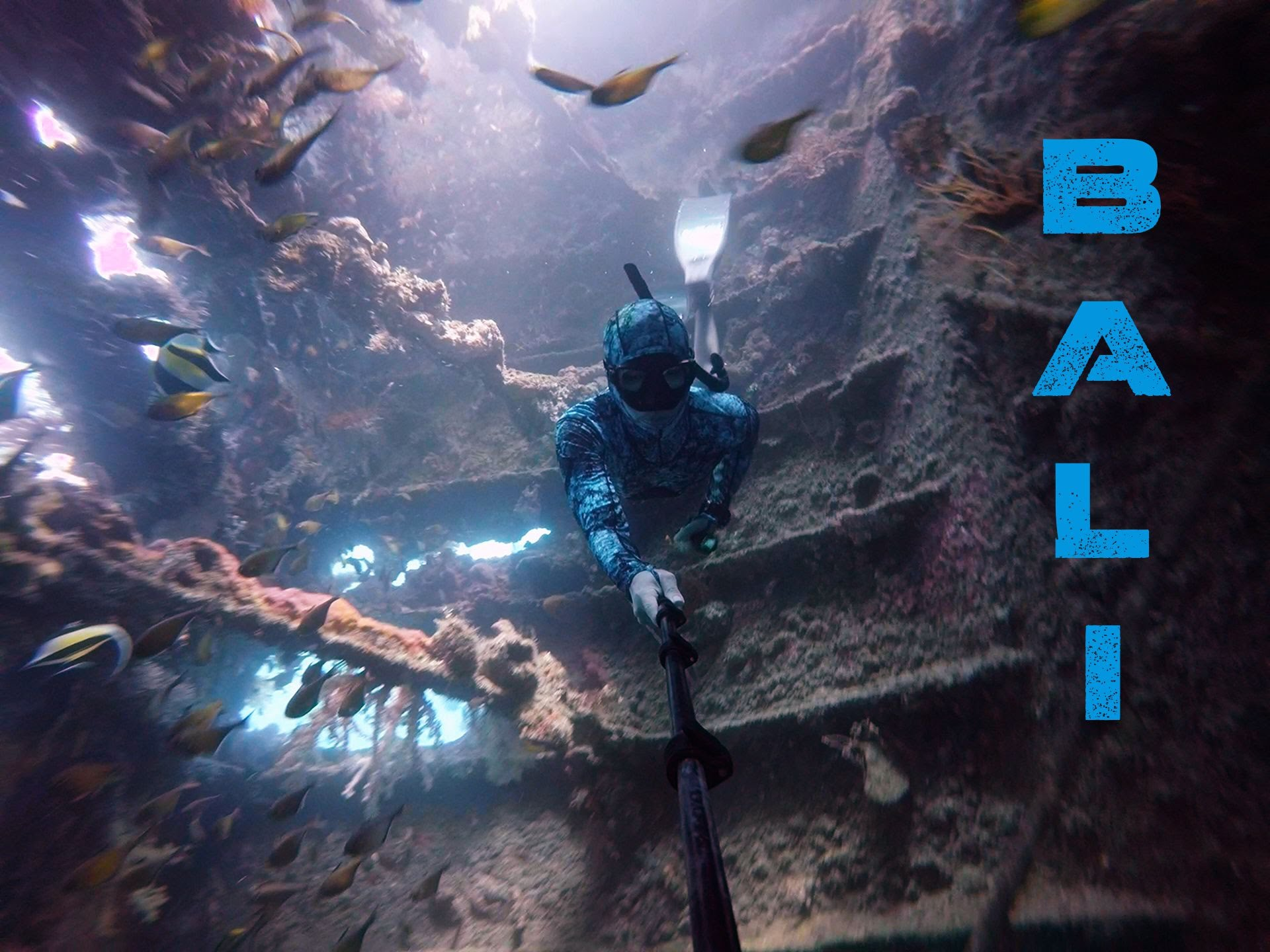 Scuba diving experience essay