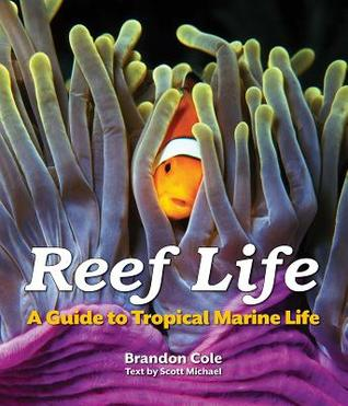 Reef Life: A Guide to Tropical Marine Life, Brandon Cole