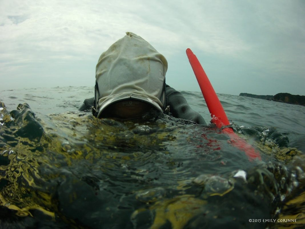 """While fins and a mask are commonplace amongst the modern Ama, snorkels are not used as this makes scoping out the sea floor from your float """"too easy"""" as they try to keep the human advantage to a minimum."""