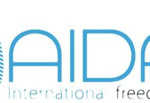 AIDA International Logo 2015