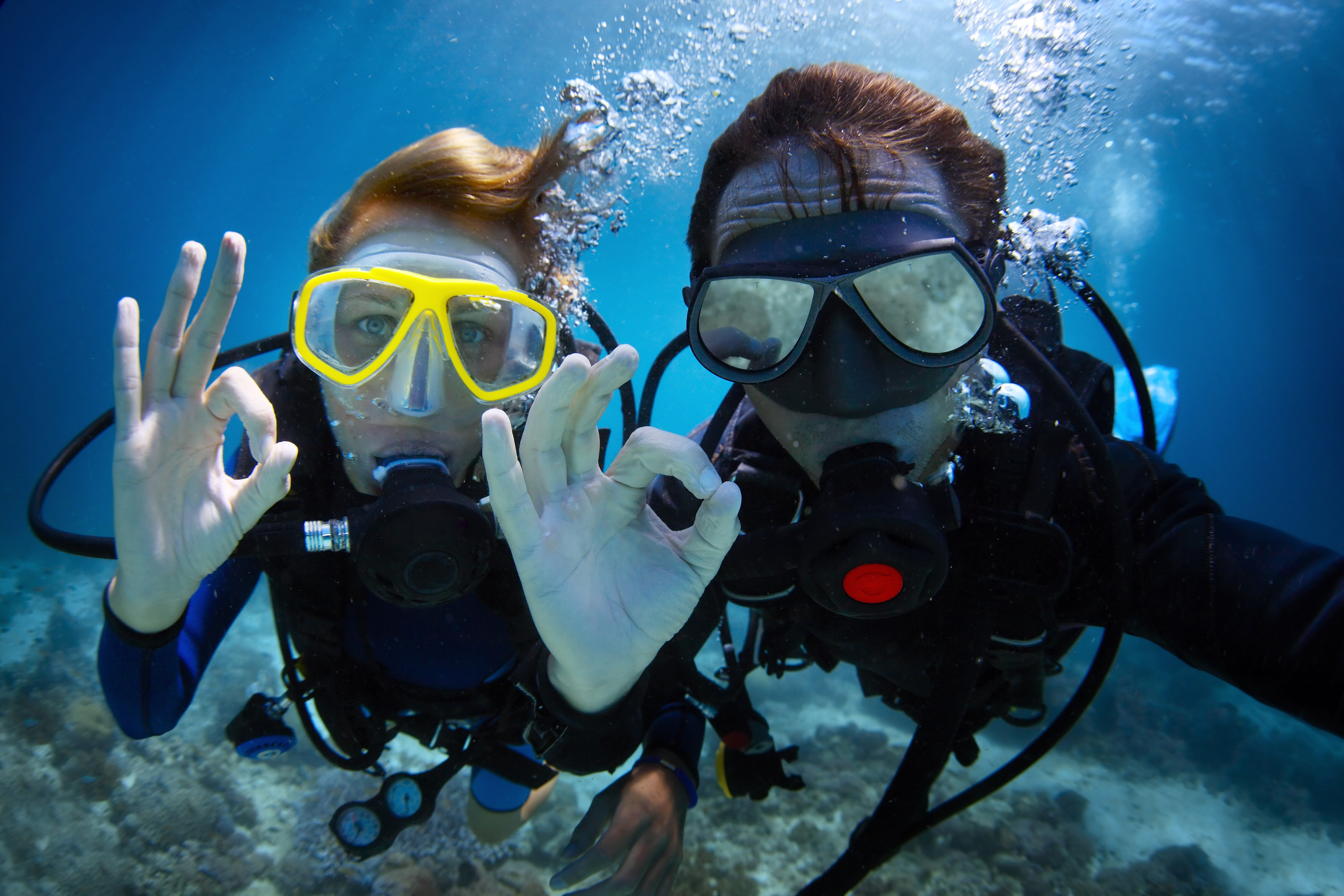 What every diver should know about training agencies deeperblue scuba divers giving the ok signal 1betcityfo Gallery