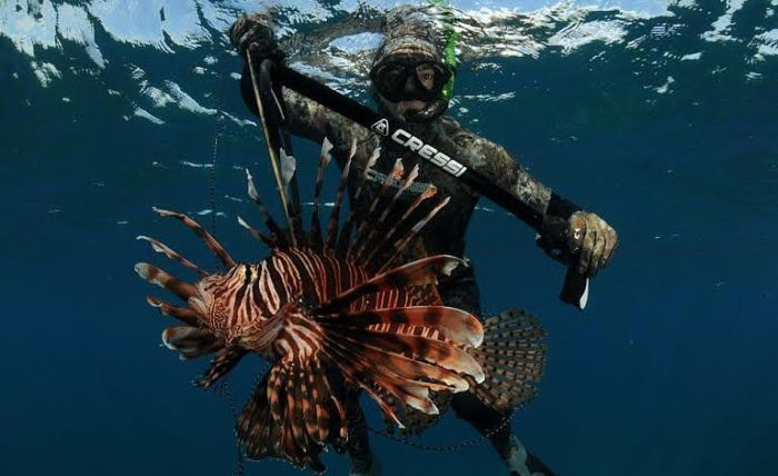 REEF.org spreads message about Lionfish threat (photo credit: REEF.org)