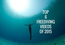 Top 6 Freediving Videos Of 2015
