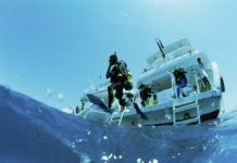 Scuba Diver diving off a liveaboard