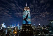 In August 2015 the team behind Racing Extinction broadcast images of endangered species onto the Empire State Building in New York to help promote the film