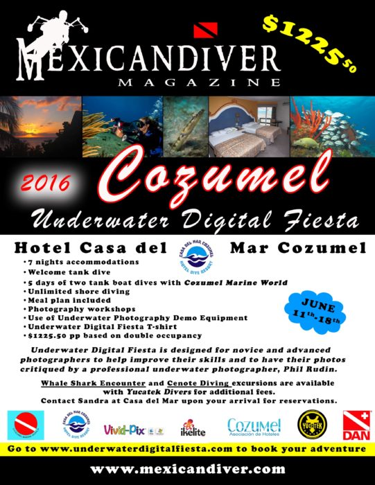 Cozumel Underwater Photography Festival To Take Place Next June