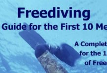 Amazon.com: Freediving: The Guide for the First 10 Meters: A Complete Manual for the 1st Level of Freediving (Freediving Books)