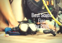 Best Scuba Fins for 2016