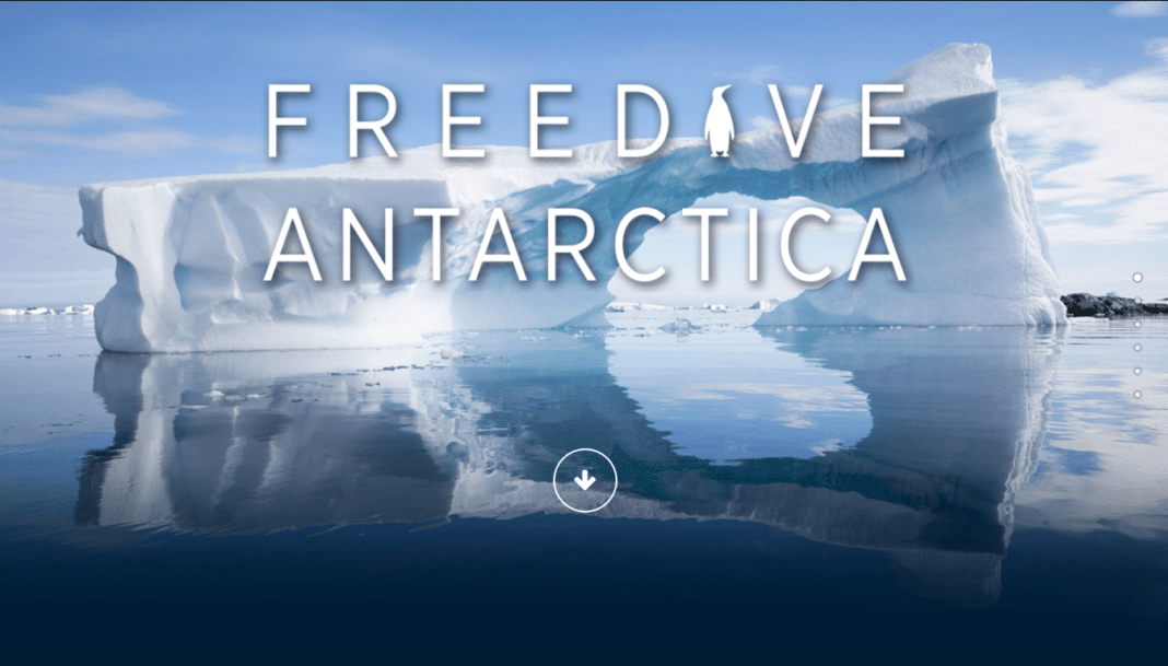 Freedive Antarctica 2016