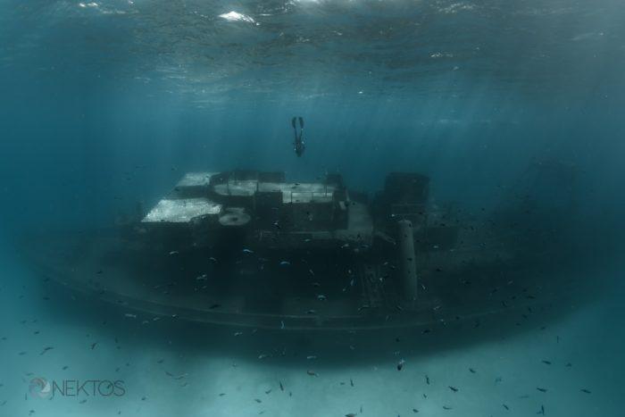 Fred Buyle Desktop Image - Freediver & Wreck