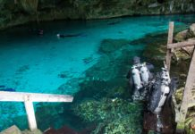 Diving in a Mexican Cenote