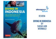 Review: Diving in Indonesia