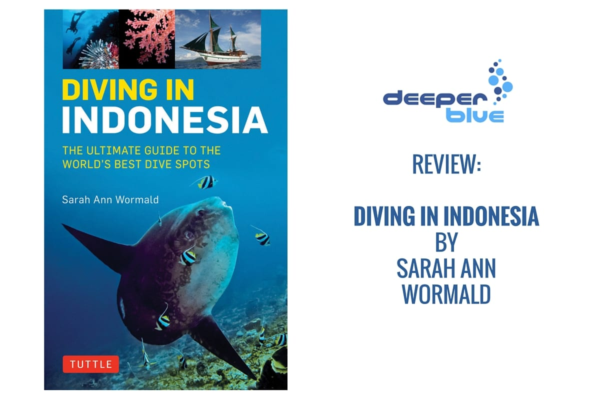 Review indonesia