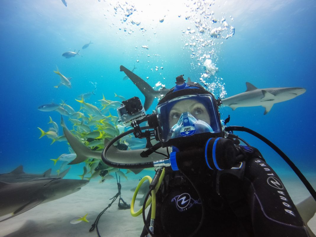 GoPro Athlete Roberta Mancino diving with Lemon Sharks in the Bahamas, March 2016
