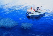 cairns based MV Reef encounter https://commons.wikimedia.org/wiki/File:Reef_Encounter_Great_Barrier_Reef.jpg