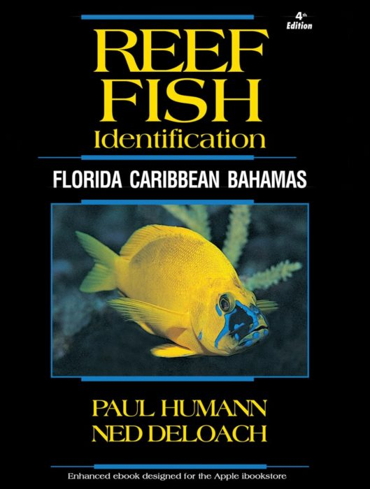 Reef Fish ID Book Now Available In Searchable, App-Like Form
